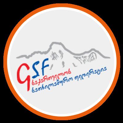 Georgian Ski Federation